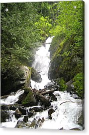 Bc Mountain Stream Acrylic Print by Reb Frost