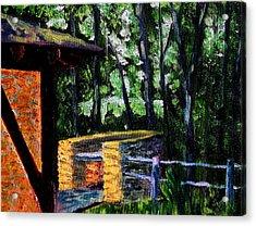 Bcsp 17 Acrylic Print by Stan Hamilton