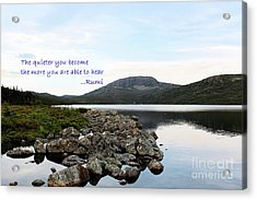 Be Quiet Hear More Acrylic Print by Barbara Griffin