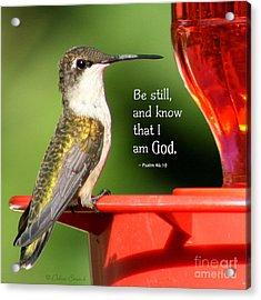 Be Still And Know Acrylic Print by Debra Straub