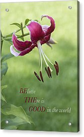 Acrylic Print featuring the photograph Be The Good by Jeanne May