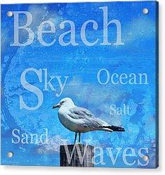 Beach Art Seagull By Sharon Cummings Acrylic Print by Sharon Cummings