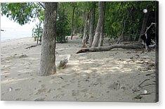 Beach At The Lake Acrylic Print