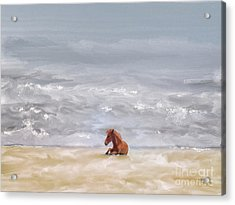 Acrylic Print featuring the photograph Beach Baby by Lois Bryan