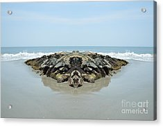 Beach Barrier Acrylic Print