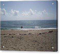Beach Bobbiong Acrylic Print by Karen Thompson