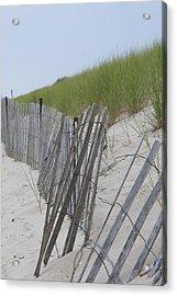 Beach Border Acrylic Print by Patricia M Shanahan