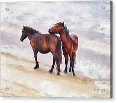 Acrylic Print featuring the photograph Beach Buddies by Lois Bryan
