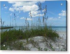 Acrylic Print featuring the photograph Beach by Carol  Bradley