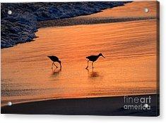 Beach Couple Acrylic Print by David Lee Thompson
