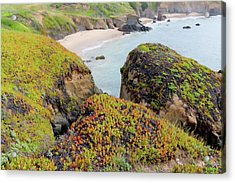 Beach Coves At Pigeon Point Acrylic Print by Art Block Collections