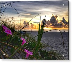 Beach Flowers Acrylic Print