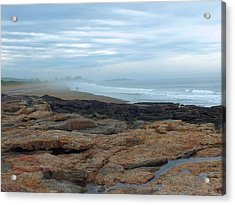 Acrylic Print featuring the photograph Beach by Gene Cyr