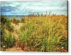 Acrylic Print featuring the digital art Beach Grass Path - Painterly by Michelle Calkins