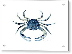 Beach House Sea Life Blue Crab Acrylic Print