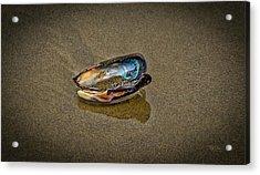 Beach Jewel Acrylic Print