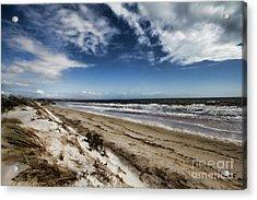 Acrylic Print featuring the photograph Beach Life by Douglas Barnard