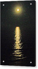 Beach Moonglow Acrylic Print by Patricia Taylor