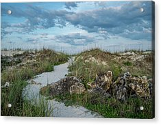 Acrylic Print featuring the photograph Beach Path by Louis Ferreira
