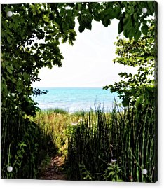 Acrylic Print featuring the photograph Beach Path With Snake Grass by Michelle Calkins