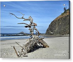 Acrylic Print featuring the photograph Beach Sculpture by Peggy Hughes