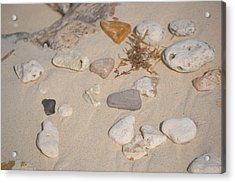 Beach Treasures 2 Acrylic Print