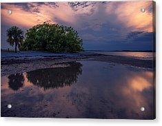 Beach Trees Acrylic Print