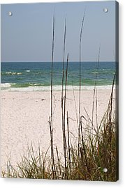 Beach View With Grass Acrylic Print by James Granberry