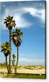 Beach View With Palms And Birds Acrylic Print by Ben and Raisa Gertsberg