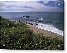 Beach Waves And Wildflowers Acrylic Print by Don Kreuter