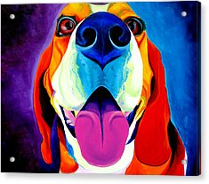 Beagle - Lollipop Acrylic Print by Alicia VanNoy Call