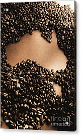 Bean To Australia Acrylic Print by Jorgo Photography - Wall Art Gallery