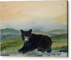 Bear Alone On Blue Ridge Mountain Acrylic Print