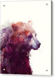 Bear // Calm Acrylic Print