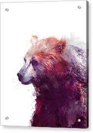 Bear // Calm - Right // White Background Acrylic Print