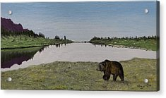 Acrylic Print featuring the painting Bear Reflecting by Kevin Daly