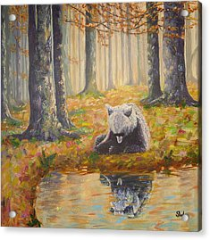 Bear Reflecting Acrylic Print