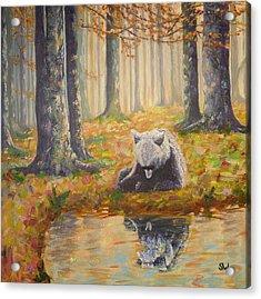 Bear Reflecting Acrylic Print