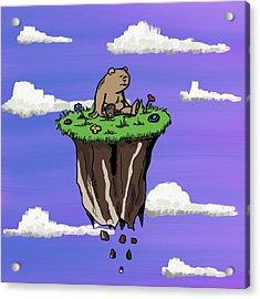 Bear Rock Acrylic Print
