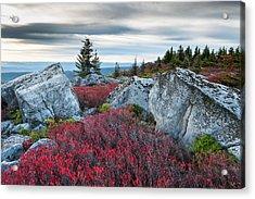 Bear Rocks Preserve West Virginia Acrylic Print by Mark VanDyke