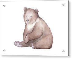 Acrylic Print featuring the painting Bear Watercolor by Taylan Apukovska