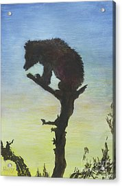 Bear With A View Acrylic Print