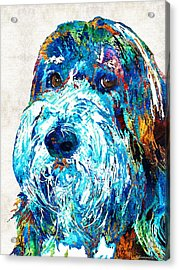Bearded Collie Art 2 - Dog Portrait By Sharon Cummings Acrylic Print by Sharon Cummings