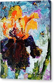 Bearded Iris And Bees Modern Impressionist Oil Painting Acrylic Print