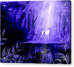 Bearer Of Wishes Acrylic Print
