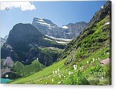 Beargrass - Grinnell Glacier Trail - Glacier National Park Acrylic Print