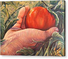 Bearing Good Fruit Acrylic Print by Renee Dumont  Museum Quality Oil Paintings  Dumont