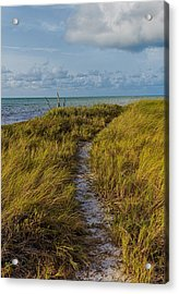 Beaten Path Acrylic Print