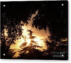 Beaumont Sunset Acrylic Print