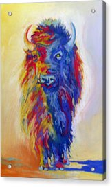 Acrylic Print featuring the pastel Beaus Buffalo by Pat Crowther